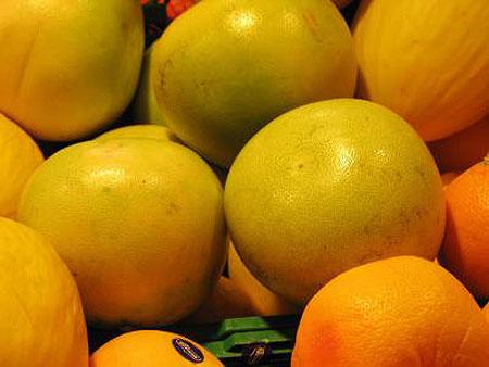 grapefruit_01.jpg