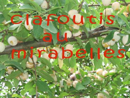 mirabelles_031.jpg