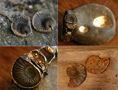 ammonit_01.jpg