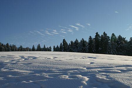 wintertage_02.jpg