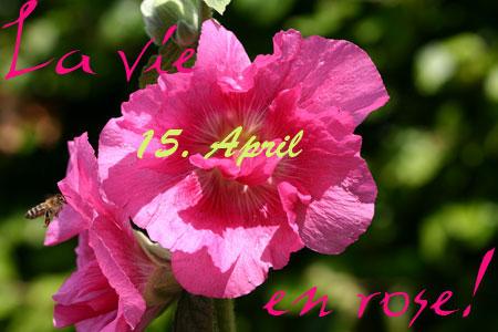 la_vie_en_rose_011.jpg