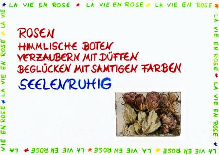 la_vie_en_rose_10.jpg
