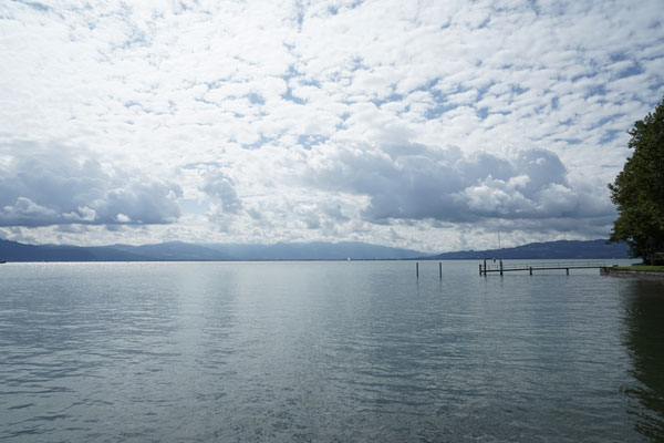 am_See_august_01